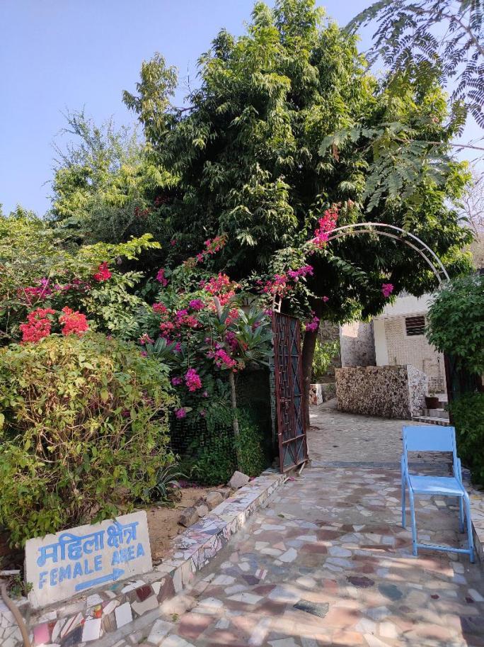 Dhamma Thali Center